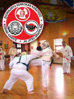 Karate and Jiu-jitsu Club West Island